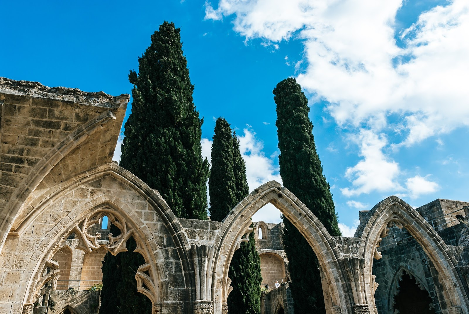 bellapais abbey monumental arches and ruins, three large trees in distance. sunny day in northern cyprus