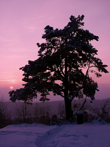 Góry Słonne, Park Krajobrazowy Gór Słonnych