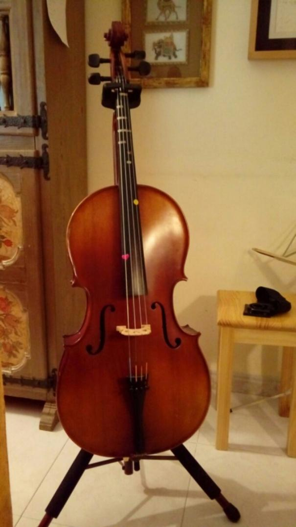C:\Users\Usuario\Desktop\violoncel 1 2.jpg