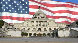 Image result for ap government and politics