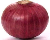 D:\Articles\முட்டையா கூமுட்டையா\Red-onion1.jpg