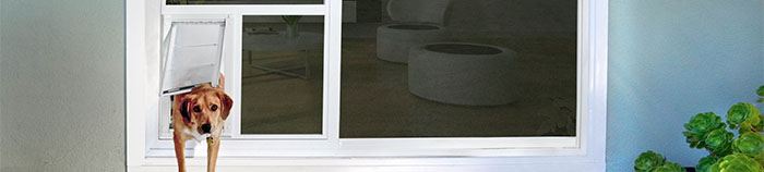 Pet door to install through glass