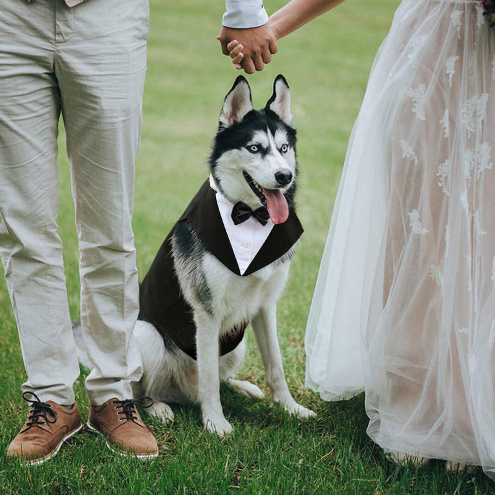 Dog Wedding Accessories dog tuxedo