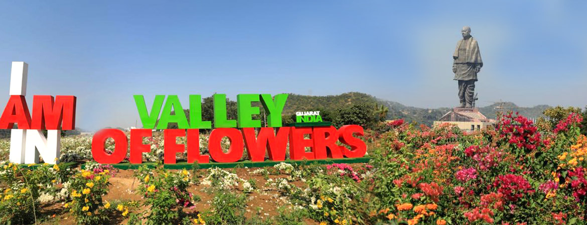 valley of flower near to statue of unity