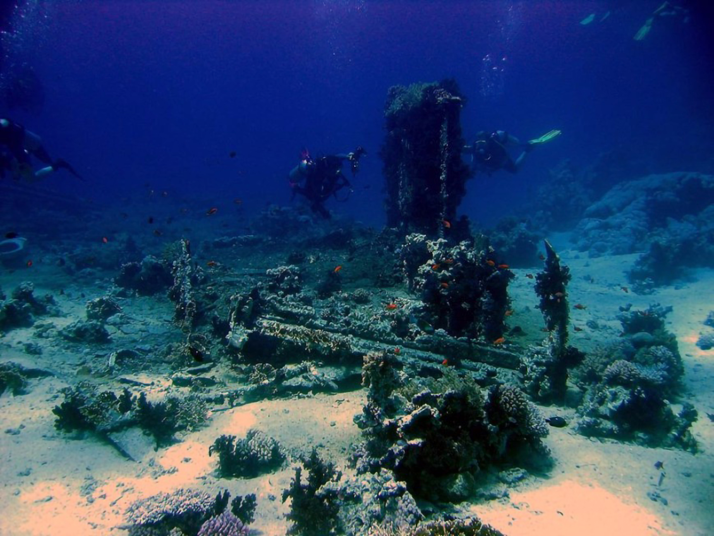 An image of divers spearfishing around the wrecks of the upper Florida Keys
