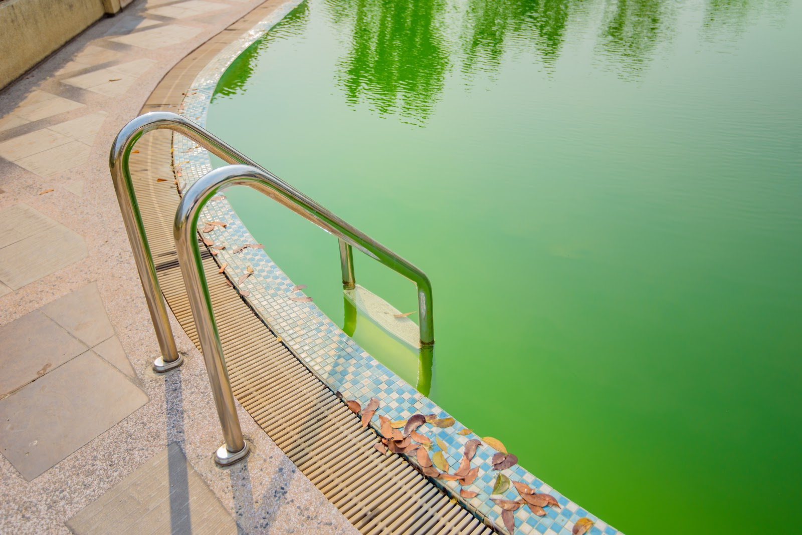 an inground pool with cloudy green pool water