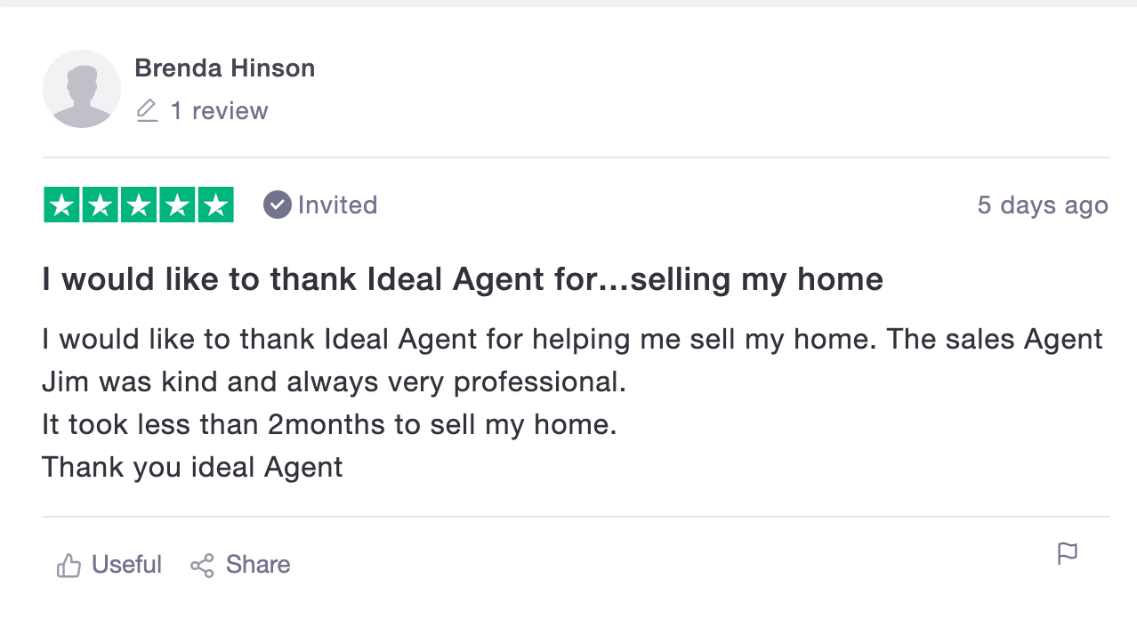 ideal agent review 3