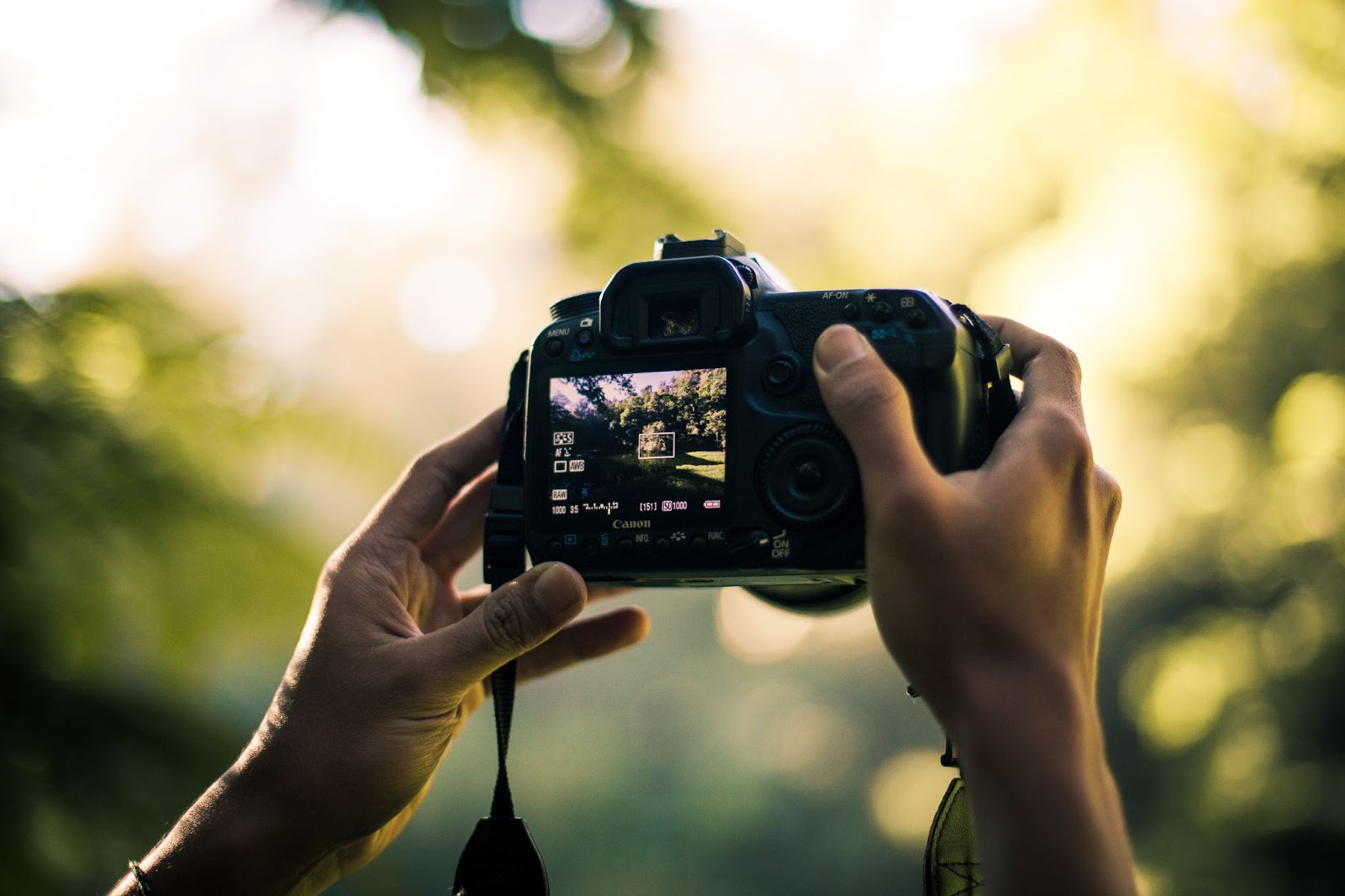 Has un curso de iluminación fotográfica si la expresión a través de la iluminación no es tu fuerte