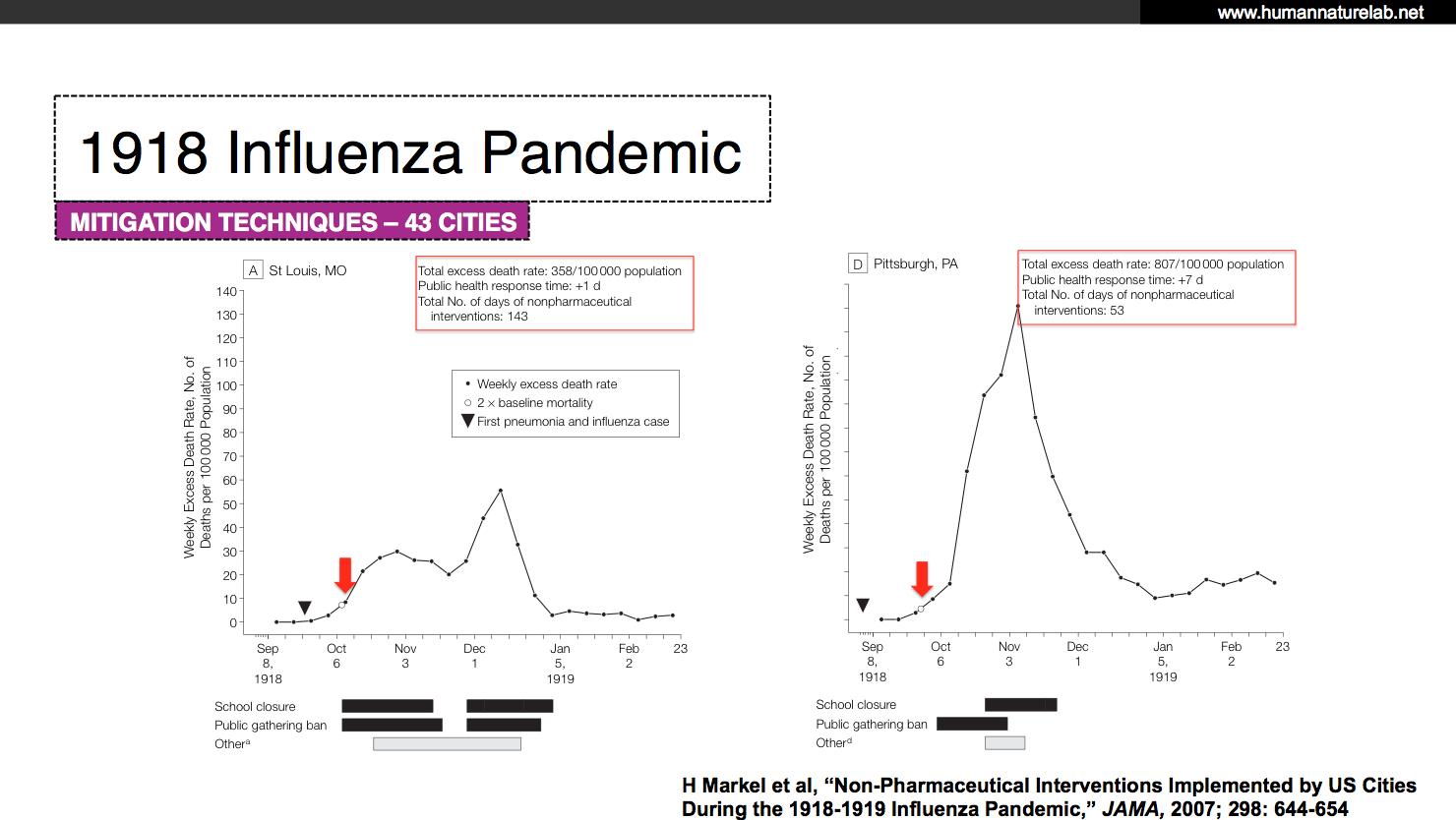 Coronavirus Primer for Reasonably Rational People -