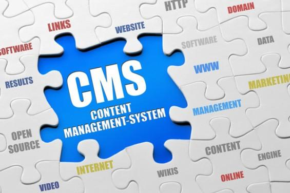 content-management-systems-565x376.jpg