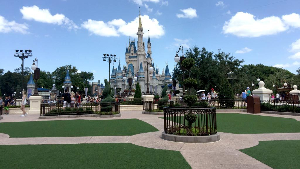 Hub grass magic kingdom disney world