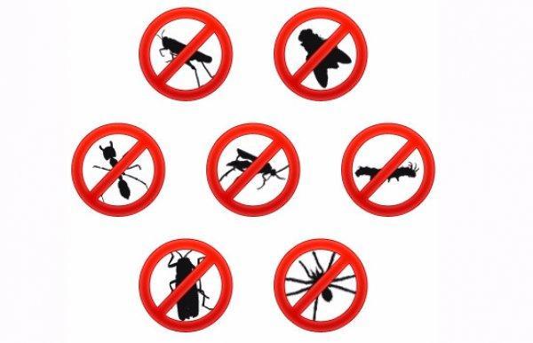 интернет магазин инсектицидов