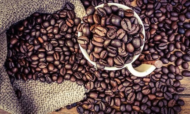 Dụng cụ cần thiết khi chế biến cà phê arabica và cà phê robusta