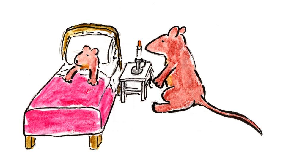 guinevere-bedtime.jpg