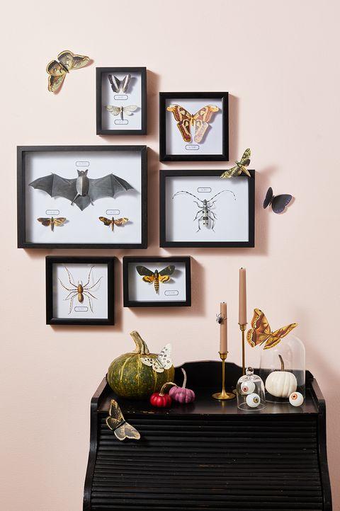 DIY Halloween Bug Wall Art