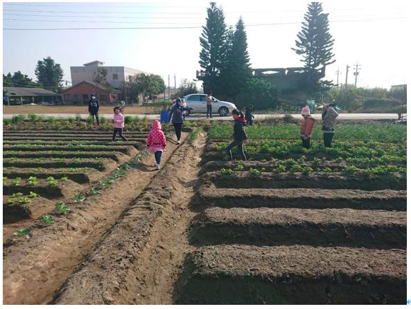 龍潭兒少與社區公共菜園相遇之美好