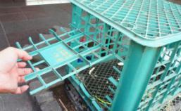 \\Servicedisk\陣列磁碟區\2012\救援安置\2012第四季\2012-105-106七堵雙兔-鮭魚、炒飯(566-567)\鮭魚炒飯\_DSC4371.JPG
