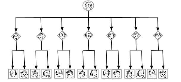 organigrama de segundo nivel escalonado.jpg