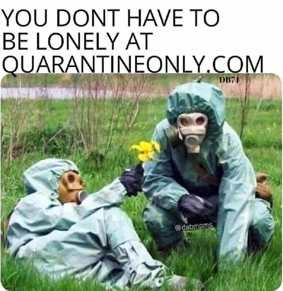 dating during the quarantine meme