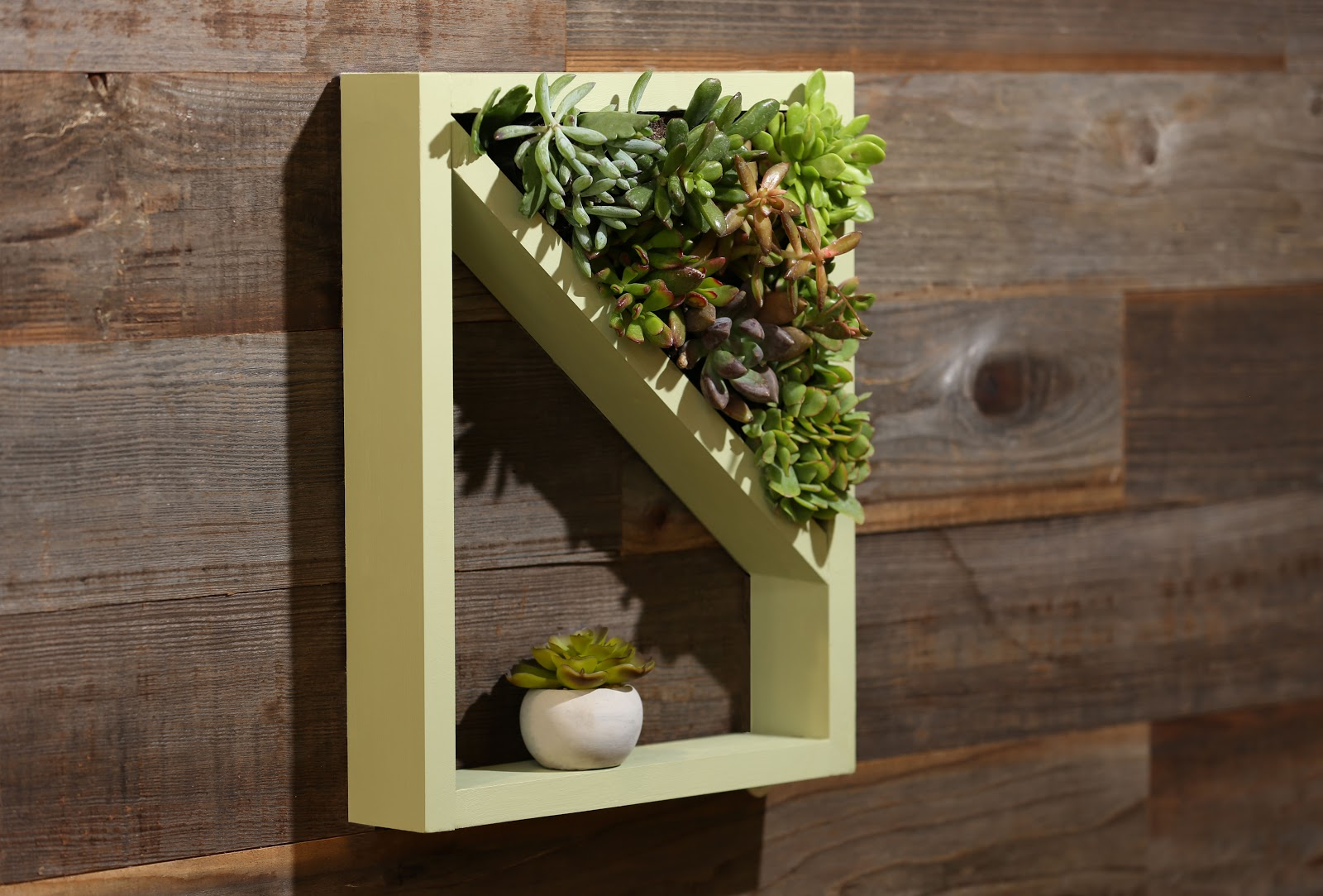 Hero shot of DIY planter with succulents against a wooden wall.