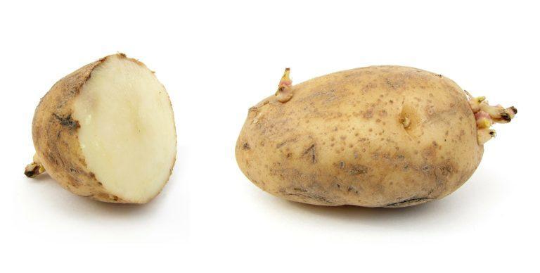 potato eyes.jpg