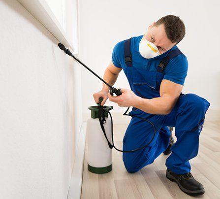 Pest Control | Fort Smith, AR | Extermco Termite & Pest Control