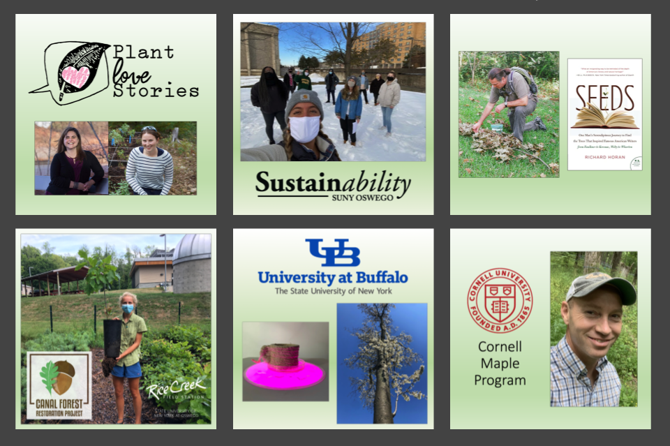 Speaker photos for the six webinars, and logos for Plant Love Stories, the University at Buffalo, the Sustainability Office at Oswego, Rice Creek Field Station, Cornell University, and the Canal Forest Restoration Project.