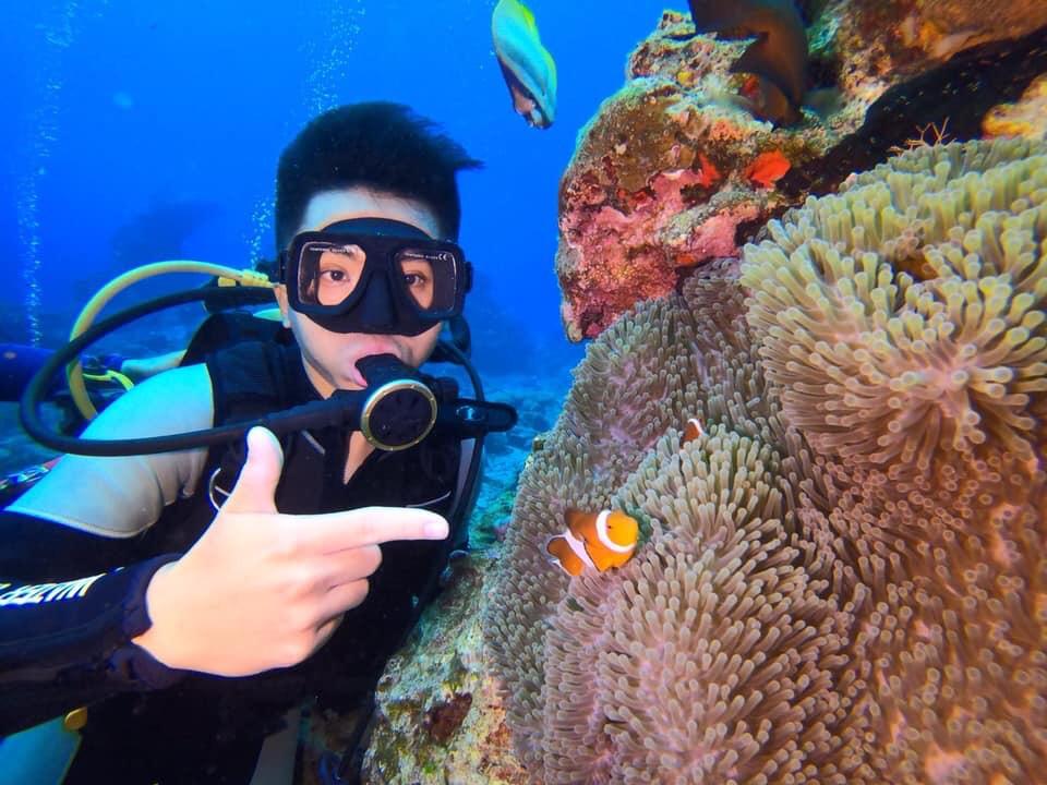綠島潛水還可以看到許多熱帶魚