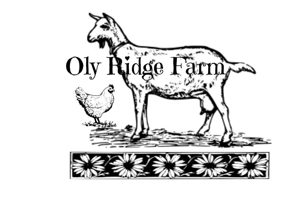 OlyRidgeFarmFont.jpg