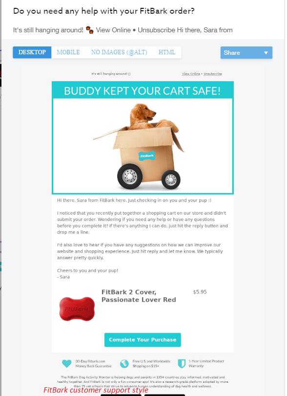 customer support in abandoned cart email copy