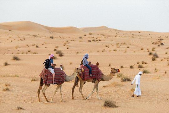 Dubai desert with camels