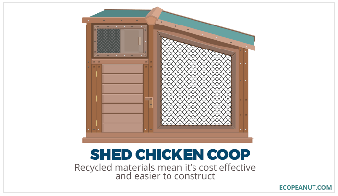 shed chicken coop graphic