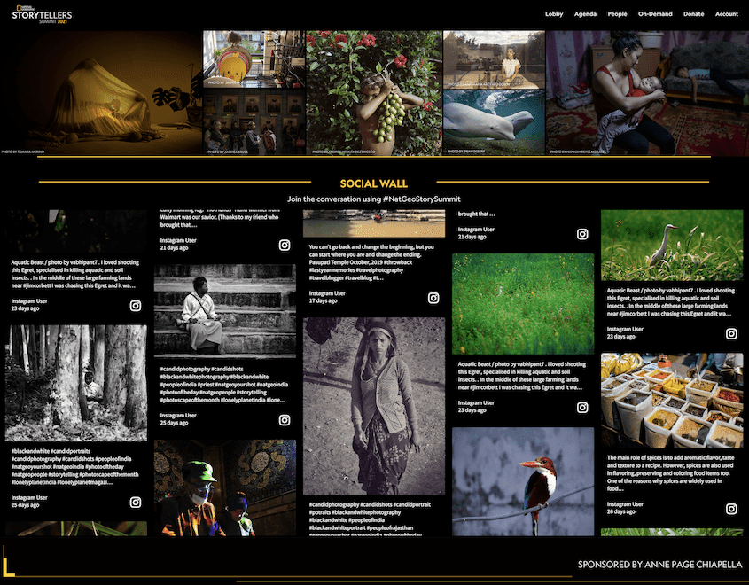 National Geographic Storytellers Summit's website displaying a social feed full of photographs and videos showing nature and people around the world.