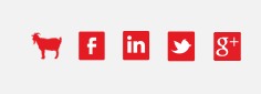 rivs social media icons