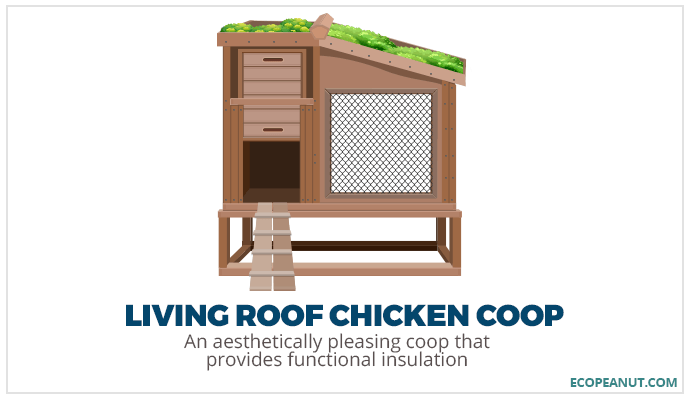 living roof chicken coop graphic