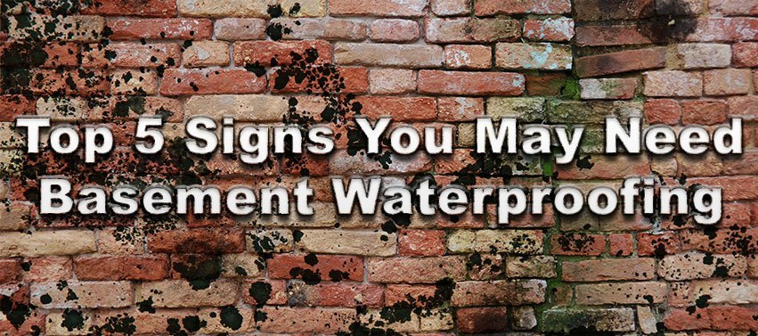 5 Signs You May Need Basement Waterproofing - Image 1