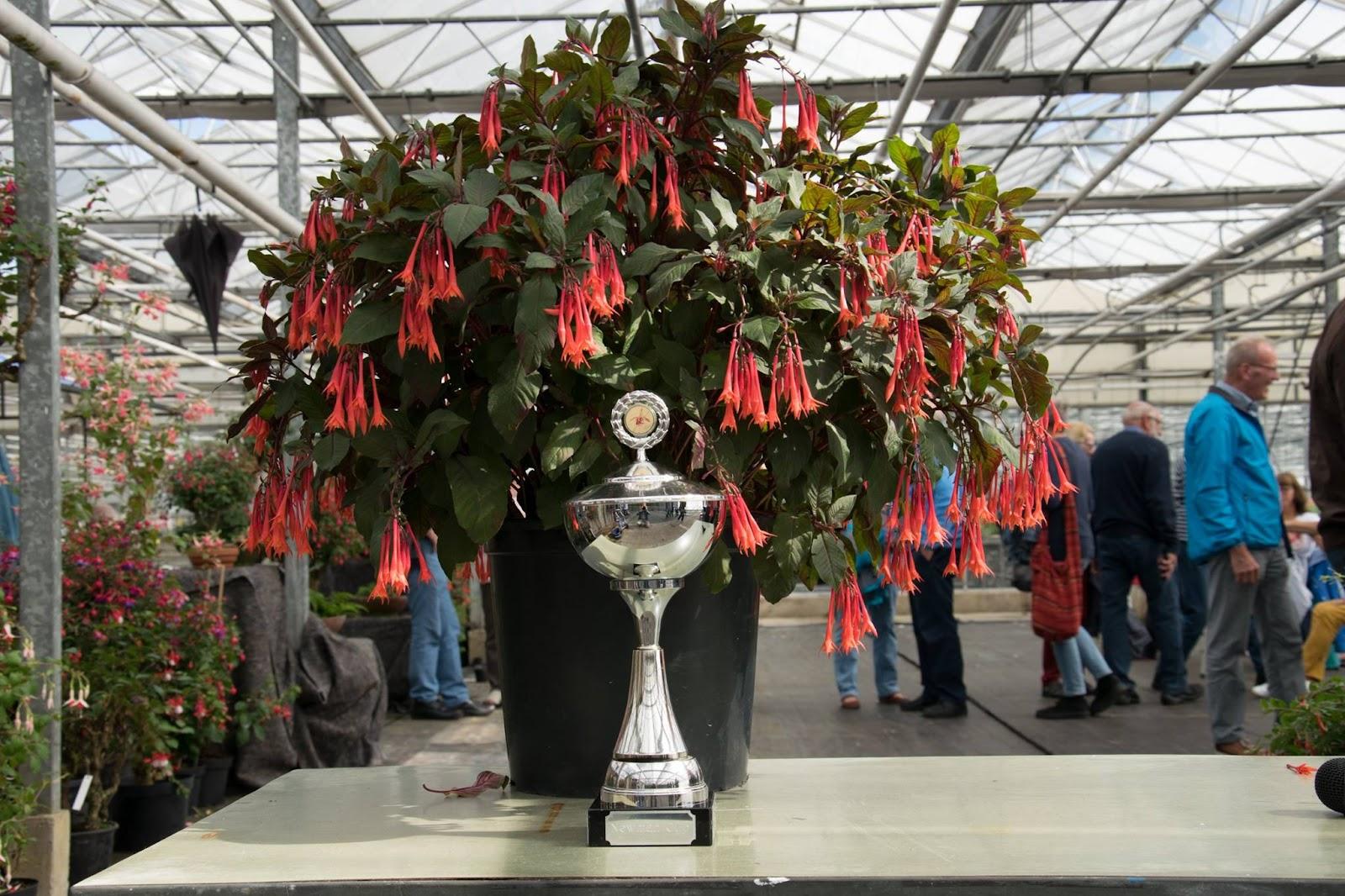 Gartenmeister Bonstedt 1e prijs Heerde.jpg