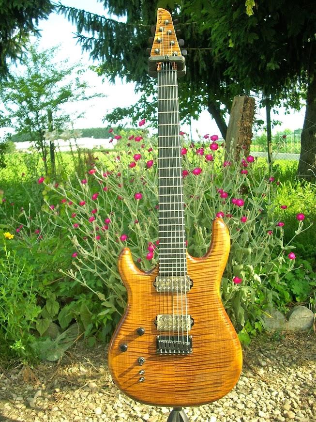guitare gaucher 7 cordes