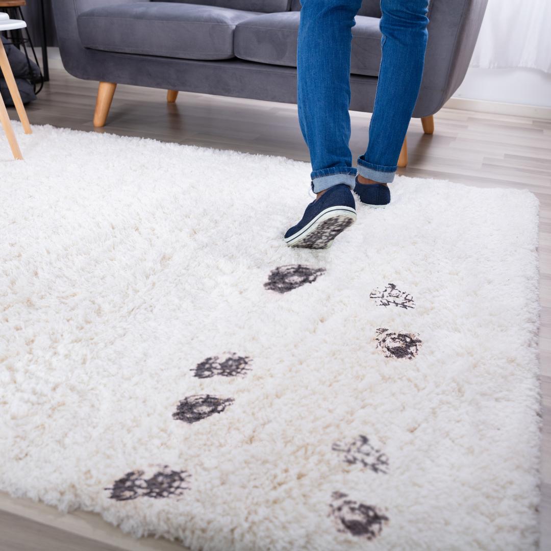 A woman in jeans walks across a white rug leaving muddy footprints behind.