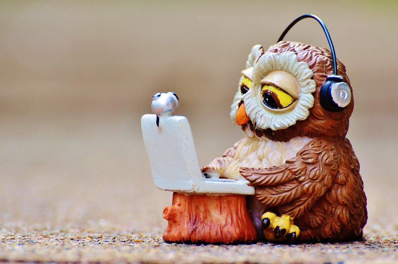 フクロウがノートパソコンを使っている画像