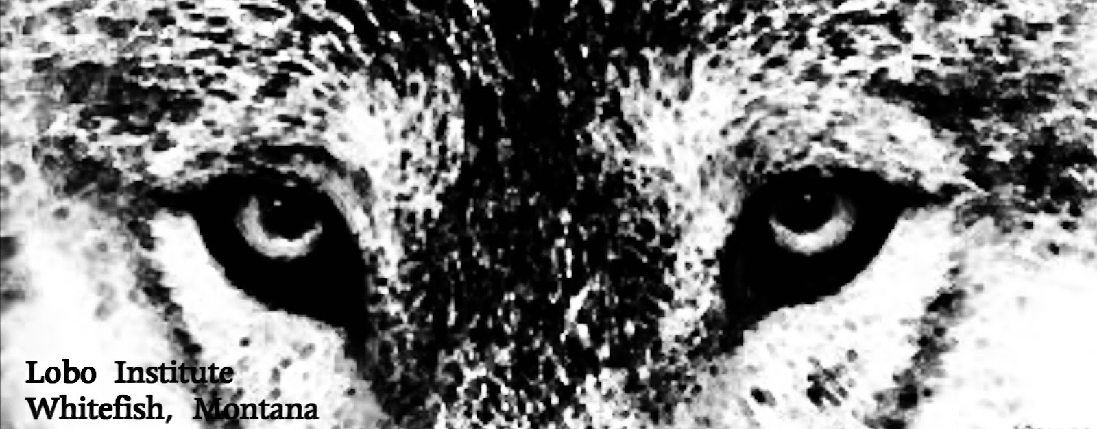 This image has an empty alt attribute; its file name is 9i5p8GtF1PRV99aFlPHOZii3HmWISv6ylRA4vLine5lu7Qy2t-DQEfzTbBcgAYz5gFSLao2O8_OGe2zziJeAHcl8o2USf18A1ysbEuYNCEwyBrzwXutlDj_MmwWLNFoDUrbmfh4