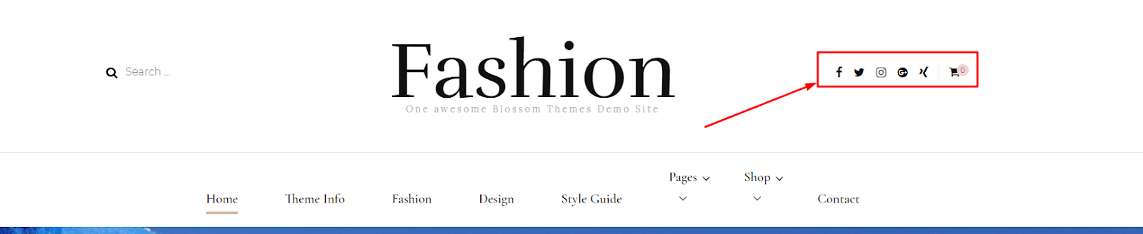 Blossom Fashion Pro Documentation - Blossom Themes