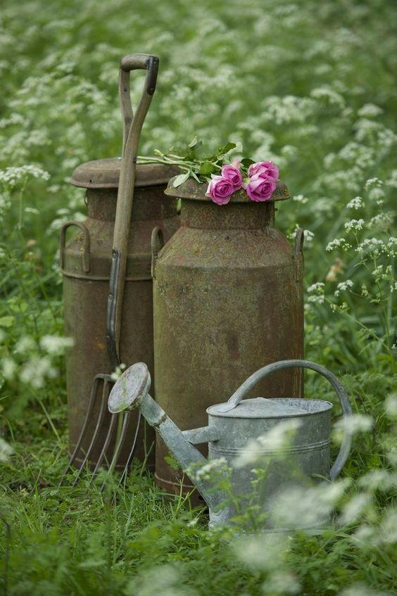 rusty old milk churns
