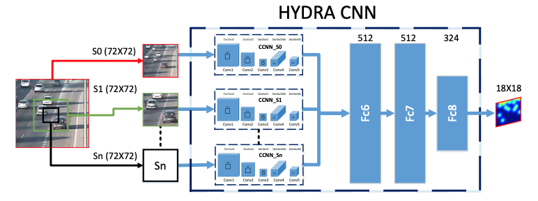 hydra CNN architecture