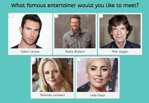 which entertainer would you like to meet question with musician images