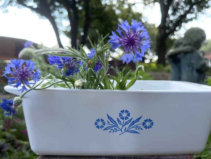A picture containing tree, flower, plant, tableware  Description automatically generated