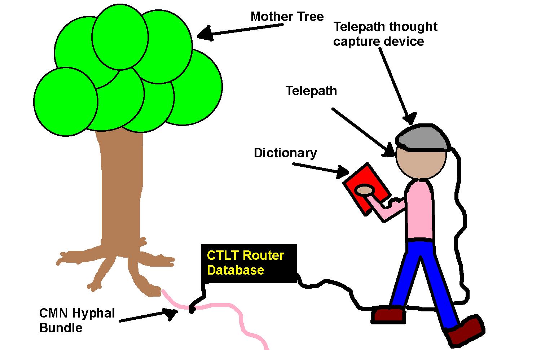Figure 1: Tree Language Translation configuration