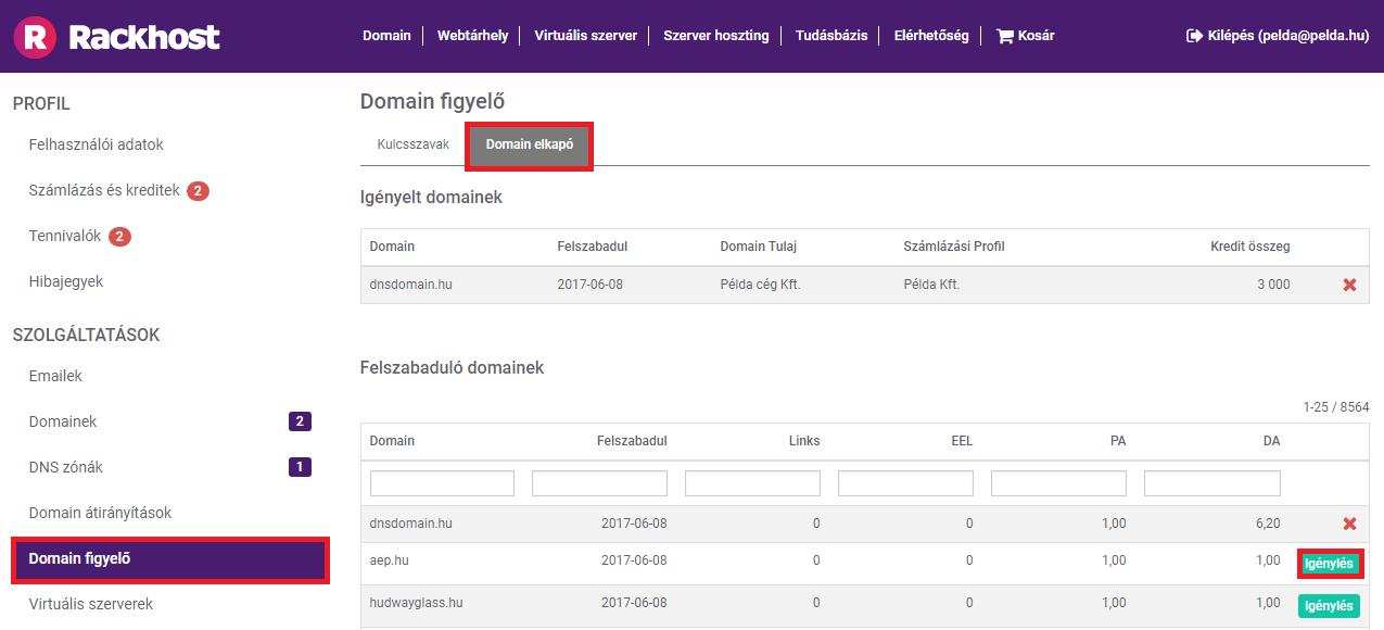 Hogyan próbálhatom ki a domain elkapót