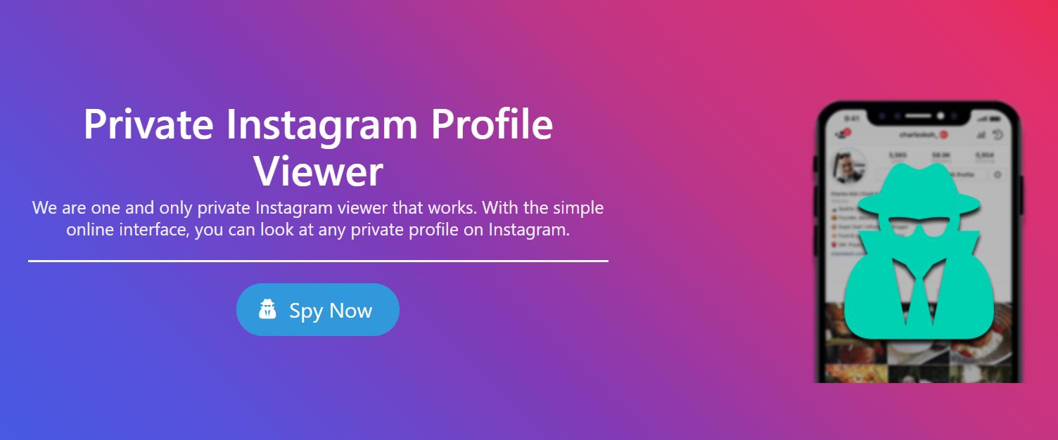 private instagram profile viewer