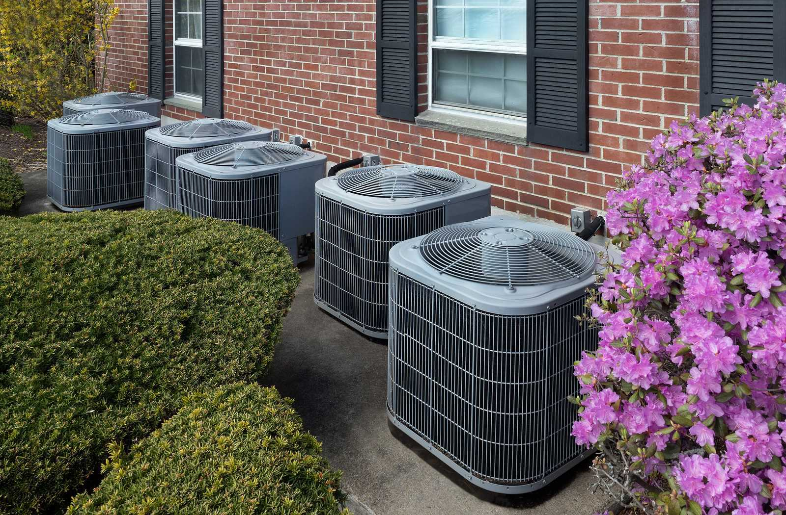 Air conditioning compressors beside garden with purple flowers